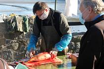 Výlovy se kvůli omezení obešly bez tradičního jarmarku. Prodej živých ryb však nalákal zájemce ze širokého okolí.