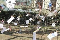 Ze stromu před blanenskou radnicí si lidé mohou utrhnout báseň.