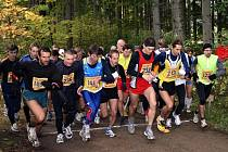 Šestadvacet závodů OBL nabídne běžcům opravdu výživný koktejl různě dlouhých tratí. Od kratších běhů do vrchu přes deseti a patnáctikilometrové štreky až po půlmaraton a maraton. Poběží se také na všemožných terénech.