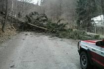 Vítr na Blanensku v pátek porážel stromy. Nešla elektřina a auta stála. Na snímku hasiči odstraňují padlé kmeny u Křtěnova.