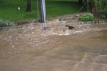 Bouřka, která sebou přinesla velké množství vody se přenesla nad celým Blanenskem. Snímky pořízené v Brťově - Jenči