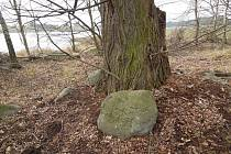 Kámen  ležící na hrázi rybníka Velký Bor u Trnavy upomíná na historicky doložený spor mezi učitelem a žákem.