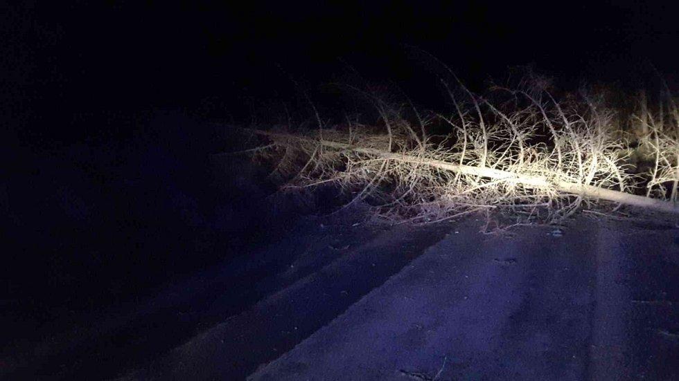 Popadané stromy, bezmála stovka výjezdů hasičů a tisíce domácností bez elektřiny. Jih Moravy zasáhly z neděle na pondělí silné poryvy větru. Vše se zatím obešlo bez zranění.