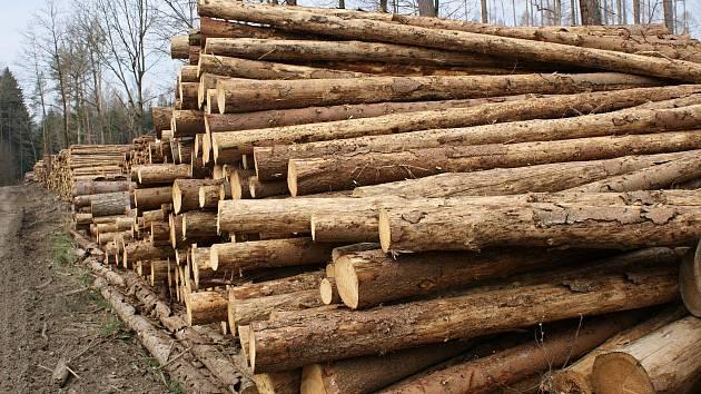 Trh se dřevem se vzpamatovává z propadu