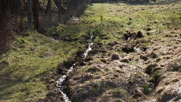 Šebetovské prameniště je nyní zarostlé bahnem.