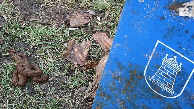 Odpadky, které patří do koše, psí exkrementy a štěrk s pískem se po oblevě válí na chodnících nebo v trávě.