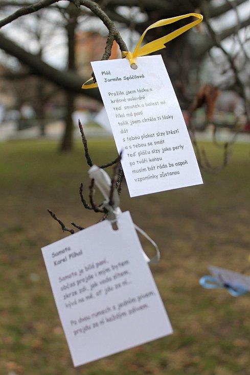 Před radnicí v Blansku kvete básníkovník. Rostou na něm plody v podobě básní.