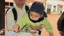 Koláč pro hospic Mobilní hospic sv. Martina. Ilustrační foto.
