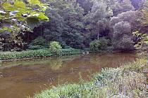 Rybník v Josefově čeká odbahnění a oprava části hráze.