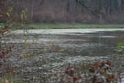 Oborský rybník v Černé Hoře je nový svazový revír Býkovka 1A. Zatím se ho po loňském výlovu nepodařilo zcela napustit a také rybí obsádka se doplňuje postupně.
