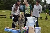 Osmý ročník Výstavy psích miláčků se v pátek konal na hřišti u Vyšší odborné školy ekonomické a zdravotnické a Střední školy Boskovice.