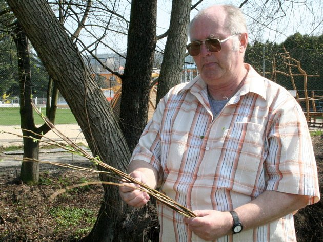 Michal Král z Blanska na břehu řeky Svitavy upletl velikonoční pomlázku.