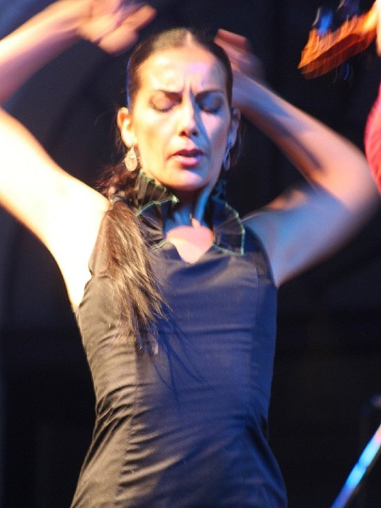Iberica 2008
