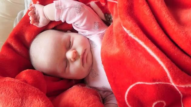 Pár porodil holčičku v autě.
