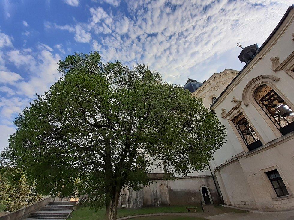 O víkendu i v půli týdne. Unikátní zvonohra rozeznívá Křtiny.