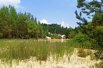 Částečně zatopený lom Seč vlese na okraji Rudice  je léta oblíbeným cílem turistů.