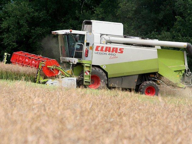 Zemědělci z bořitovského družstva Zepo sklízejí řepku na polích u Obory.