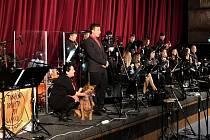Benefiční koncert v blanenském kině pomohl městskému psímu útulku. Ve sbírce organizátoři vybrali bezmála čtyřiatřicet tisíc korun.