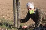Nabroušený nůž, roubovací páska, štěpařský vosk a na zádech otep roubů do volné krajiny. S takovou výbavou každé jaro vyráží do přírody Zdeněk Špíšek z Blanska. Stejně jako jeho děda, který ho učil roubovat, hledá v terénu podnože pro budoucí ovocné strom
