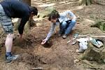 Unikátní keltský opasek našel náhodně muž v lese na Kunštátsku. Po zakonzervování září nyní opasek starý více než dvattisíce let v plné kráse. Foto: archiv Muzea regionu Boskovicka