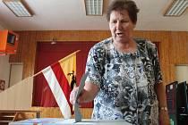 Ve Velenově spojili volby s místním hlasováním o stavbě rozhledny.