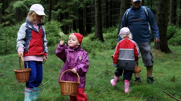 Po letním půstu, kdy bylo sucho, se už letošní houbařská sezona rozjela naplno. Do lesů v okolí obce Suchý a Benešov vyrazili například Šimečkovi z Brna.