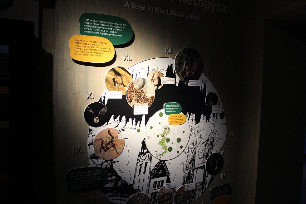 Expozice o živočiších v Moravském krasu