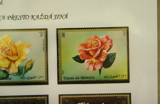 Květiny na známkách uvidí lidé na výstavě.