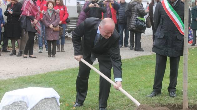 Padesáté výročí partnerství Blanska a italského Scandiana připomíná nový strom na náměstí Svobody.