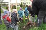 Při příležitosti Dne Země děti v Boskovicích pomohly vysadit novou alej.