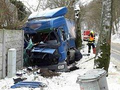 Kamion sjel u Adamova mimo silnici.