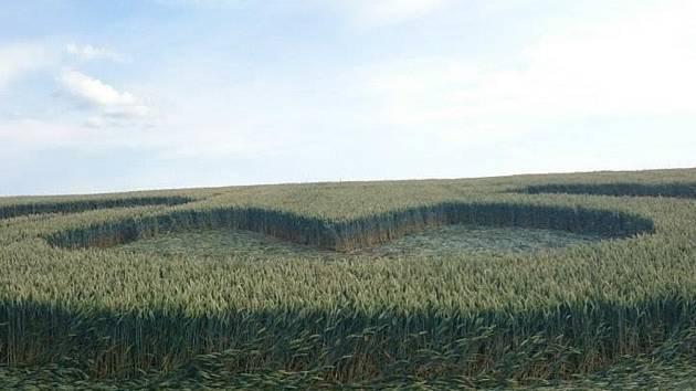 Kruh s výsečí. Uprostřed symbol, který vzdáleně připomíná srdce. Z pole pšenice poblíž státní silnice I/43 mezi Krhovem a Skalicí nad Svitavou září agrosymbol. Podle všeho vznikl v noci ze soboty na neděli.