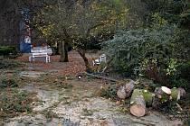 Vichřice na konci října poškodila také střechu na budově Zámeckého skleníku v Boskovicích a stromy v přilehlém parku.
