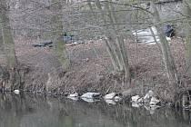 Odpadky na břehu Svitavy. Ilustrační foto.