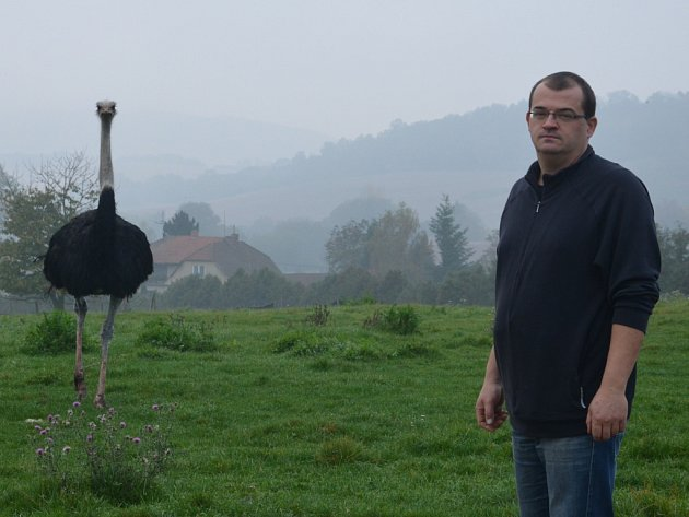 Marek Kubíček provozuje v Doubravici pštrosí farmu.