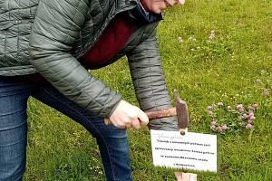 Hanu Kvapilovou (na snímku) v Boskovicích na Blanensku už několik let trápil stav tamních trávníků. Společně s několika přáteli proto před časem v Boskovicích založili iniciativu Zelená peřina. Kromě problematiky péče o trávníky se věnují také stavu strom