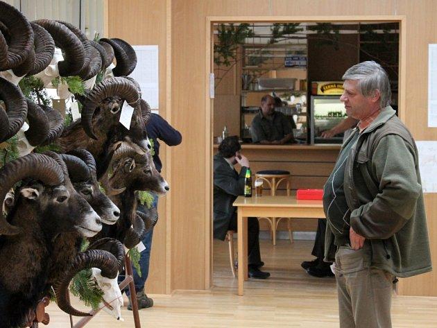 Téměř šest stovek srnčích trofejí. Přes padesát dančích, více než třicet mufloních. Ale také trofeje z divočáků, lišek, jezevců, jelenů a muflonů. To vše si mohou od pátku do neděle prohlédnout návštěvníci chovatelské přehlídky trofejí v Černé Hoře.