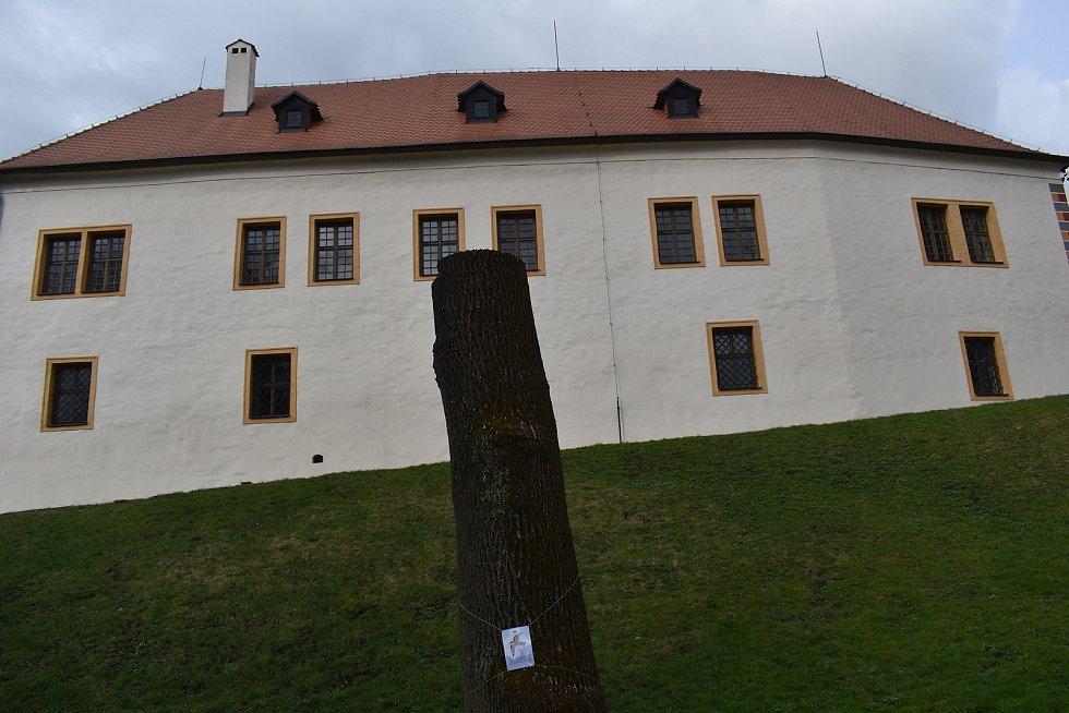 Blanenský zámecký park láká k jarní vycházce.