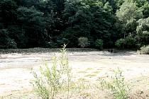 Dělníci z rybníka v Josefově nedaleko Adamova vybagrují bahno. Později zpevní hráz a vyčistí břehy.