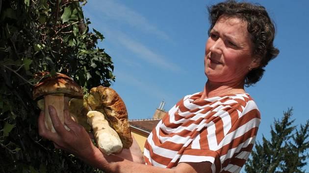Houbařská sezona na Blanensku bylo letos hubená.