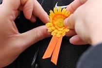 K již tradiční akci, kterou je Český den proti rakovině, se připojili i Blanenští. V ulicích města i před obchodním domem Kaufland nabízeli studenti tamní střední gastronomické školy kolemjdoucím žluté květy. Kdo si kvítek minimálně za dvacet korun koupil