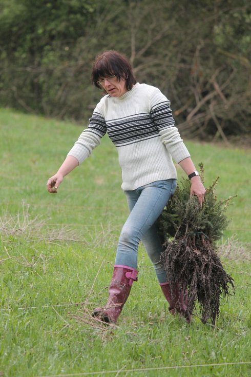 Valchovské už nebavilo udržovat nevyužitou louku, tak se rozhodli místo ní vysázet více než jeden hektar lesa.