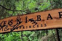 Necelé dva měsíce. Zhruba tak dlouho fungoval samoobslužný lesní bar nedaleko Letovic na Blanensku.