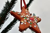 Masarykovo náměstí v Letovicích zdobí patnáct vánočních stromků v nádobách.