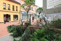 V Blansku si sobotní vichřice pohrála i se stromy v centru města. Jeden z nich skončil na pěší zóně v Rožmitálově ulici na zemi.