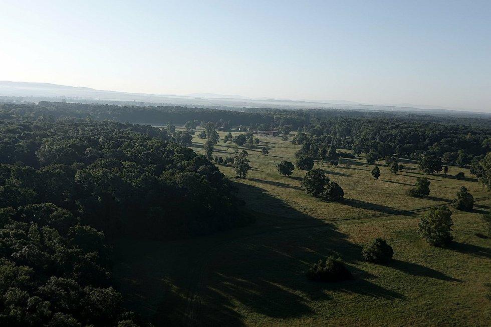Motorový paraglidista Petr Buchta z Adamova na Blanensku tentokrát změnil letový plán. S křídlem a fotoaparátem nevystartoval nad oblíbený Moravský kras, ale kompas stočil minulý víkend více na jih. Konkrétně na Břeclavsko.