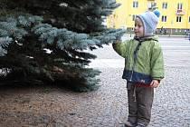 Vánoční strom na náměstí Republiky v Blansku už stojí. Nazdobení se dočká v příštích dnech.