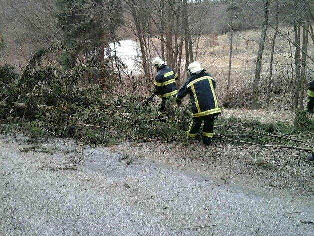 Vítr na Blanensku porážel stromy. Ilustrační foto.