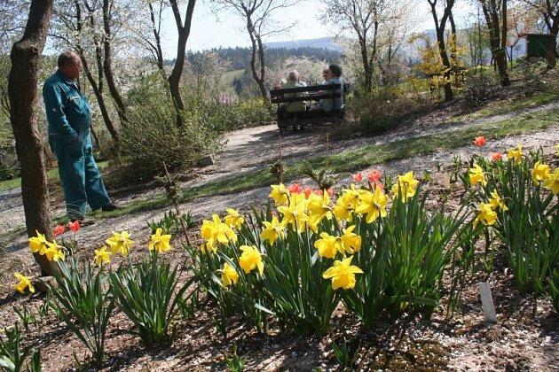 Arboretum Šmelcovna