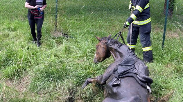 Koně zachraňovali z bláta hasiči v Knínicích u Boskovic.